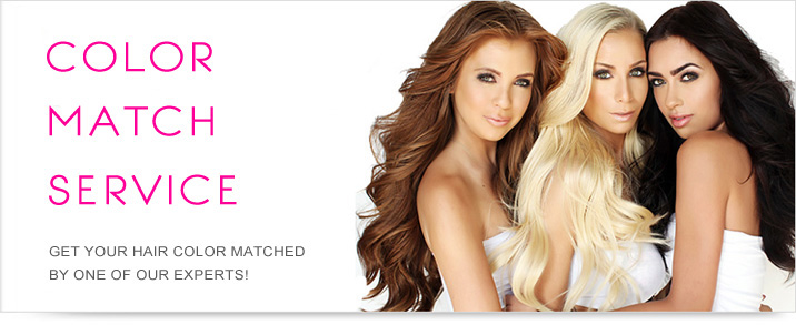 Hair Extensions Color Match Top Banner United States